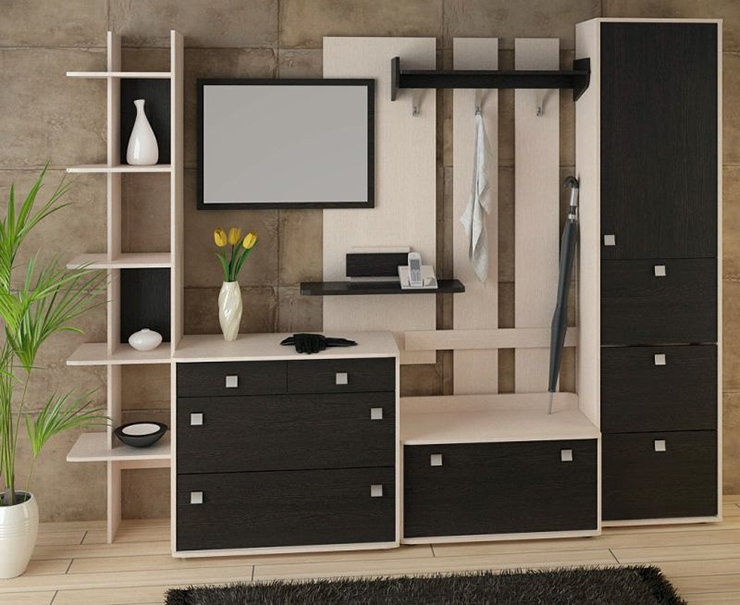 Модель черного цвета для прихожей в современном стиле