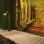 Изображение дороги леса для оформления гостиной комнаты