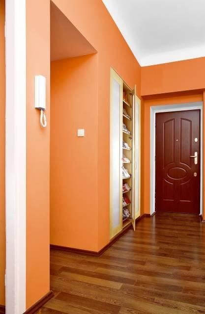 Оранжевая однотонная прихожая