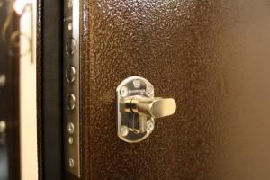 Порошковая покраска входной двери