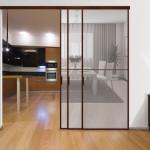 Стильная перегородка для комнаты с прозрачным полотном