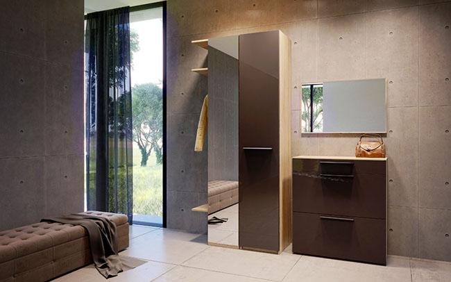 Соврменный дизайн прихожей с коричневой мебелью