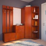 Красые оттенки в оформлении прихожей в мебели