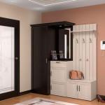Темный цвет двери в прихожей с светлой отделкой