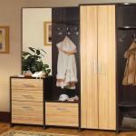 На что обратить внимание при покупке мебели для прихожей