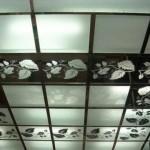 Использование оргстекла на потолке