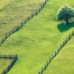Правила выбора земельного участка