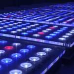 Разнообразие светодиодных светильников