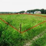 Советы по выбору земельного участка