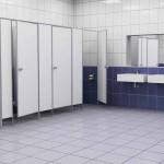 Выбор сантехнических перегородок в туалет