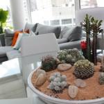 Комнатные растения в оформлении интерьера