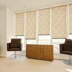 Рулонные шторы или жалюзи на пластиковые окна — что лучше